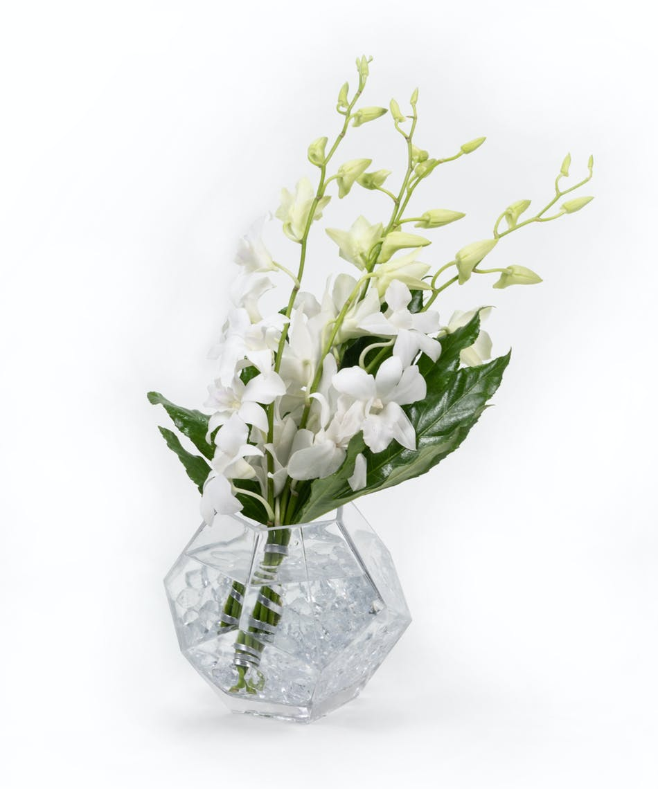Everyday flowers eastern floral gift delivery in grand rapids everyday flowers eastern floral gift delivery in grand rapids holland grand haven izmirmasajfo