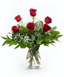 Classic Half Dozen Roses with Babies Breath