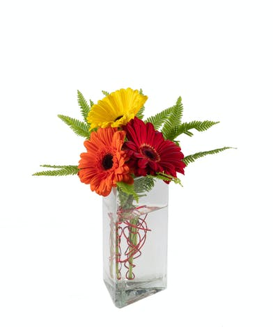 Bright Bunch - Eastern Floral - Grand Rapids, MI Flower Delivery
