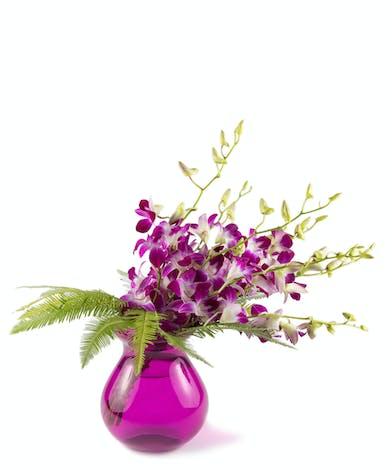 Marvelous Magenta - Eastern Floral - Grand Rapids, MI Flower Delivery