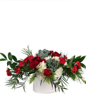 Sweet and Succulent - Eastern Floral - Grand Rapids, Holland, Grand Haven, Spring Lake, MI Flower Delivery