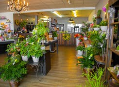 Take a step inside our bright, welcoming Grand Rapids showroom